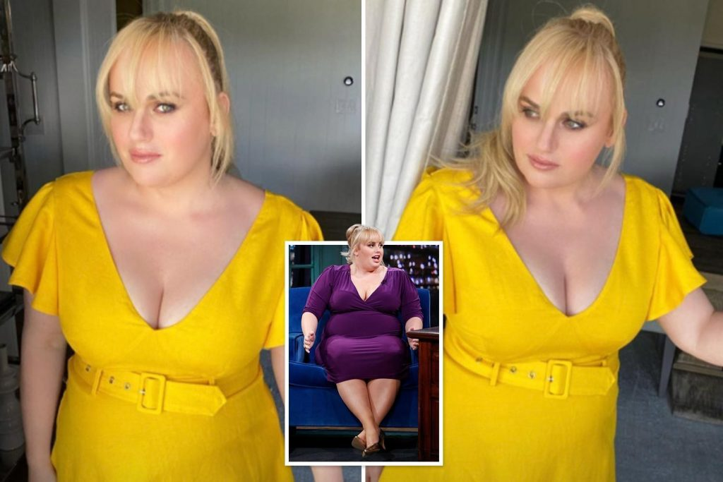 Rebel Wilson's incredible weight loss